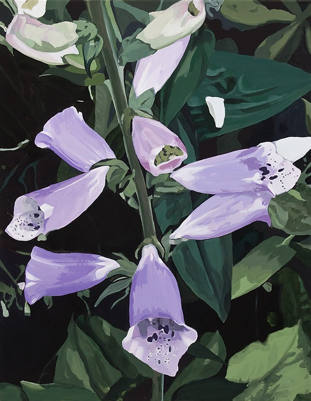 Each night brought something new. Digitalis II (2011) — Minna Hannele Lappalainen